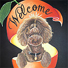 Welcome & Pet Board